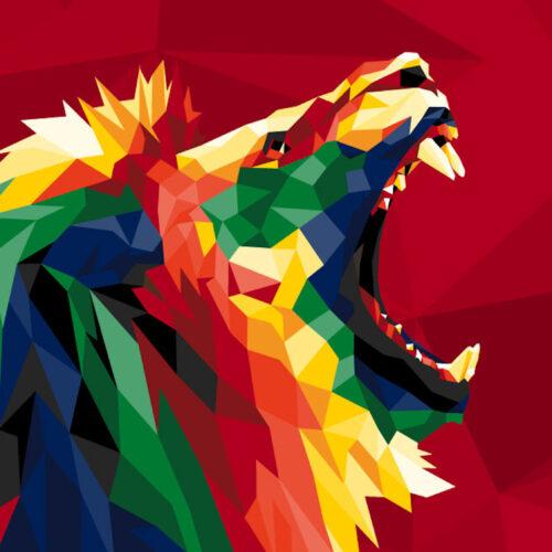 The British and Irish lions Tour – Sat 31st July